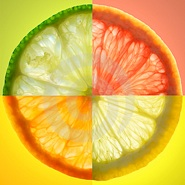 citrus-slice-thumb